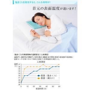 ◆激安セール◆ 身体に優しい!自然な快眠を 「...の詳細画像3