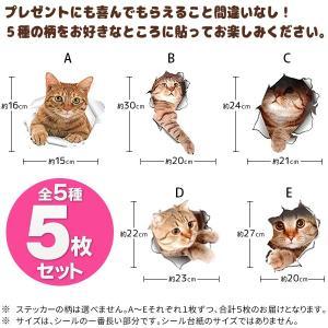 ウォールステッカー 5枚セット とびだす猫タイ...の詳細画像1