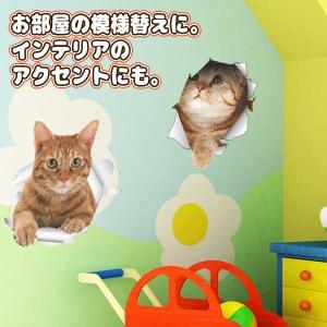 ウォールステッカー 5枚セット とびだす猫タイ...の詳細画像4