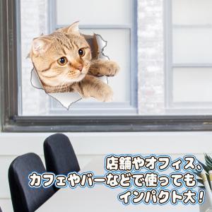 ウォールステッカー 5枚セット とびだす猫タイ...の詳細画像5
