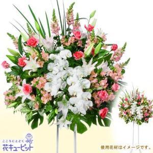 スタンド花・花輪(開店祝い・開業祝い) 花キューピットのスタンド花お祝い一段(ピンク系、胡蝶蘭入り)|i879