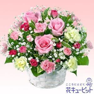 ホワイトデー 花キューピットのピンクバラのアレンジメント お祝い 花 記念日 お礼 お返し i879