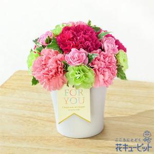 母の日ギフト・グラマラス(ピンク) 花キューピット プレゼント カーネーション ママ お母さん
