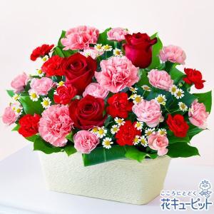 母の日ギフト 花キューピットの赤バラとカーネーションのバスケ...