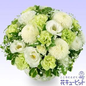 ペット用フラワーギフト・お供え 花キューピットのペット用お供えアレンジメント ペット 供花|i879