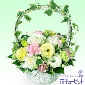 ペット用フラワーギフト・お供え 花キューピットのお供えアレンジメント|i879
