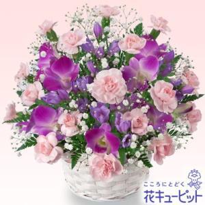 誕生日フラワーギフト 花キューピットのデンファレのアレンジメント 花 ギフト 誕生日 プレゼント|i879