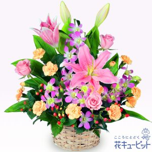 誕生日フラワーギフト 花キューピットのピンクユリのアレンジメント 花 ギフト 誕生日 プレゼント|i879