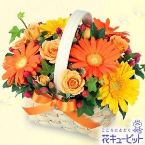 誕生日フラワーギフト 花キューピットのオレンジ&イエローのアレンジメント 花 ギフト 誕生日 プレゼント|i879