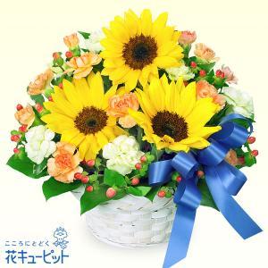 誕生日フラワーギフト 花キューピットのひまわりとブルーリボンのアレンジメント 花 ギフト 誕生日 プレゼント|i879