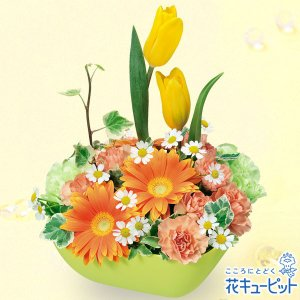 誕生日フラワーギフト 花キューピットのチューリップとガーベラのアレンジメント(オレンジ)花 ギフト 誕生日 プレゼント