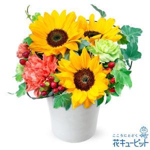 誕生日フラワーギフト 花キューピットのひまわりのアレンジメント 花 ギフト 誕生日 プレゼント|i879