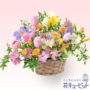 2月の誕生花(チューリップ等) 花キューピットのカラフルなアレンジメント 誕生日 お祝い 記念日 プレゼント 家族 友人 i879