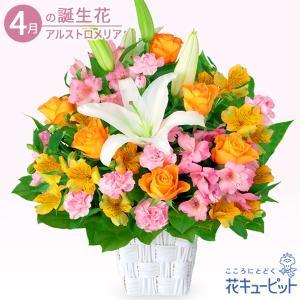 4月の誕生花(アルストロメリア等) 花キューピットのユリとアルストロメリアのアレンジメント お祝い 記念日 お礼 誕生日 プレゼント|i879