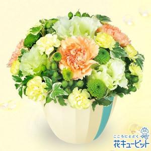 8月の誕生花(トルコキキョウ等) 花キューピットのグリーンアレンジメント 花 ギフト 誕生日 プレゼント|i879