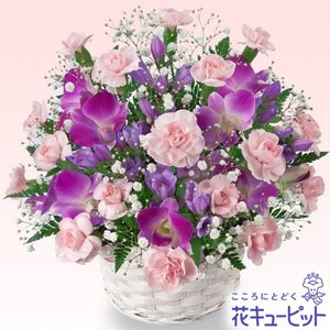 9月の誕生花(デンファレ等) 花キューピットのデンファレのアレンジメント 花 ギフト 誕生日|i879
