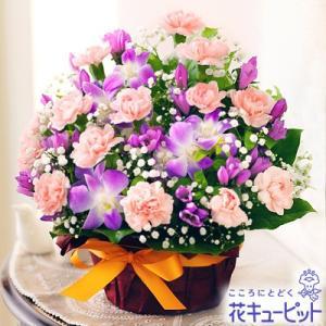 9月の誕生花(デンファレ等) 花キューピットの秋のピンクアレンジメント 花 ギフト 誕生日|i879