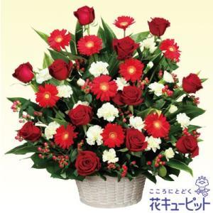誕生日フラワーギフト・バラ 花キューピットの赤色のアレンジメント 花 ギフト 誕生日 プレゼント|i879