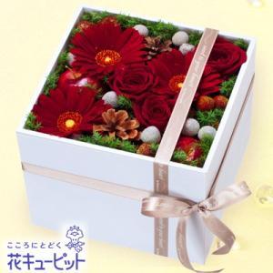 12月の誕生花(赤バラ等) 花キューピットの冬のモダンアレンジメント 誕生日 お祝い 記念日 プレゼント|i879