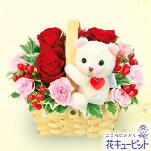 12月の誕生花(赤バラ等) 花キューピットのくまのマスコット付きアレンジメント 誕生日 お祝い 記念日 プレゼント|i879