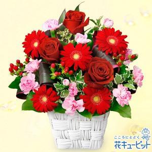 12月の誕生花(赤バラ等) 花キューピットの赤バラと赤ガーベラのスクエアバスケット 誕生日 お祝い 記念日 プレゼント|i879