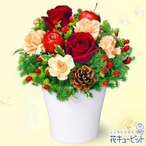 12月の誕生花(赤バラ等) 花キューピットの赤バラのウィンターアレンジメント 誕生日 お祝い 記念日 プレゼント|i879