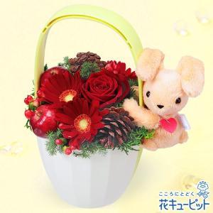 12月の誕生花(赤バラ等) 花キューピットのうさぎのマスコット付きアレンジメント 誕生日 お祝い 記念日 プレゼント|i879