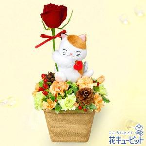 12月の誕生花(赤バラ等) 花キューピットの三毛猫のマスコット付きアレンジメント 誕生日 お祝い 記念日 プレゼント|i879