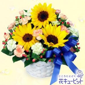 結婚記念日 花キューピットのひまわりとブルーリボンのアレンジメント|i879