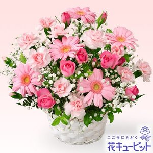 結婚記念日 花キューピットのピンクガーベラのアレンジメント 花 ギフト お祝い プレゼント|i879