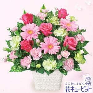 お祝い 花キューピットのピンクガーベラのアレンジメント 花 プレゼント ギフト i879
