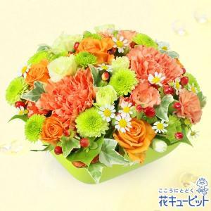 お祝い 花キューピットのオレンジバラとカーネーションのアレンジメント 花 プレゼント 誕生日 記念日 歓送迎|i879