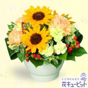 出産祝い 花キューピットのひまわりのボールコンポートアレンジメント i879