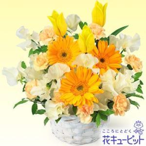 出産祝い 花キューピットの春のイエローアレンジメント(イエロー&オレンジ) 花 ギフト お祝い プレゼント i879