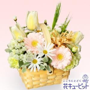 出産祝い 花キューピットの春のガーデンバスケット 花 ギフト お祝い プレゼント i879