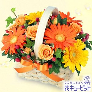 出産祝い 花キューピットのオレンジ&イエローのアレンジメント 花 ギフト お祝い プレゼント i879