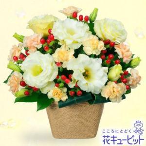 出産祝い 花キューピットのトルコキキョウのアレンジメント 花 ギフト お祝い プレゼント i879