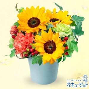 出産祝い 花キューピットのひまわりのアレンジメント i879