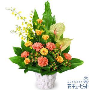 開店祝い・開業祝い 花キューピットのオレンジバラのアレンジメント|i879