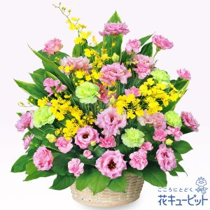 開店祝い・開業祝い 花キューピットのトルコキキョウの華やかアレンジメント 花 ギフト お祝い プレゼント|i879