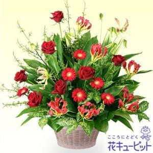 開店祝い・開業祝い 花キューピットの赤のアレンジメント 花 ギフト お祝い プレゼント|i879