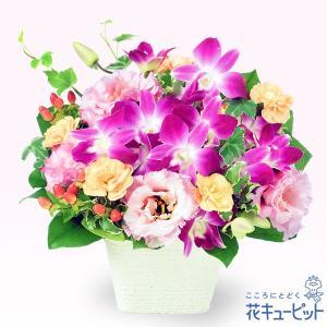 退職祝い 花キューピットのデンファレとトルコキキョウのアレンジメント 花 ギフト お祝い プレゼント i879