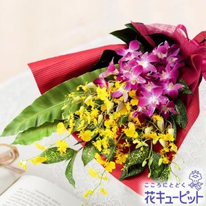 退職祝い 花キューピットのデンファレの花束 花 ギフト お祝い プレゼント|i879