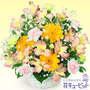 お見舞い 花キューピットのアルストロメリアのアレンジメント 花 ギフト プレゼント|i879