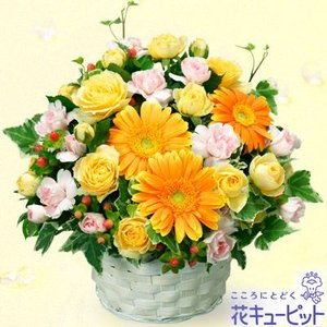 お見舞い 花キューピットのオレンジガーベラのアレンジメント 花 ギフト プレゼント|i879