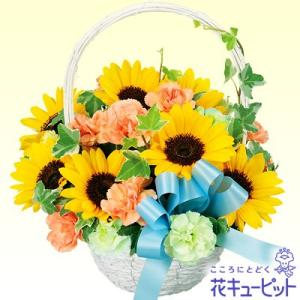 お見舞い 花キューピットのひまわりのリボンアレンジメント|i879