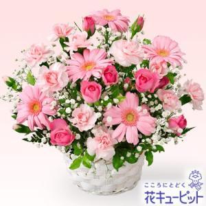 お見舞い 花キューピットのピンクガーベラのアレンジメント 花 ギフト プレゼント|i879