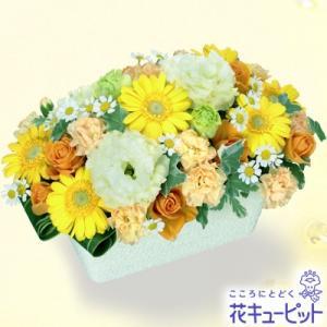 お見舞い 花キューピットのイエローガーベラのアレンジメント 花 ギフト プレゼント|i879