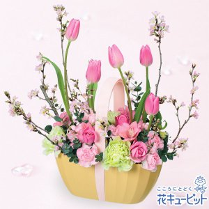 お見舞い 花キューピットのチューリップと桜のアレンジメント 花 ギフト プレゼント|i879