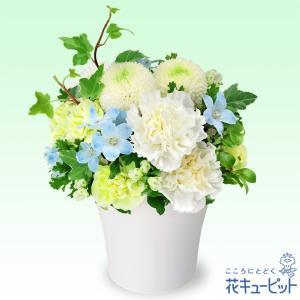 白いお花に淡いブルーの小花をあわせた、お供えのアレンジメントです。優しく柔らかい色合いが、故人を偲ぶ...